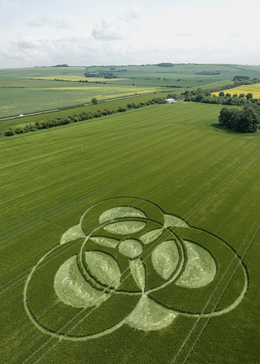The magnificent crop circles of southern England.